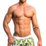 Nohavičkové pánské plavky s potiskem palmových listů