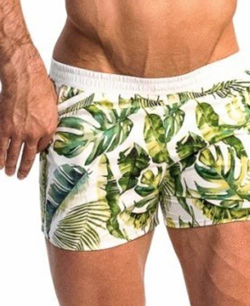 Pánské plavky Alpha Male Playo Palm